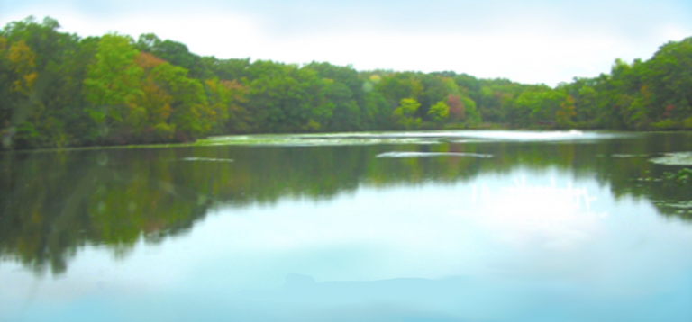 Lake i Remington Woods